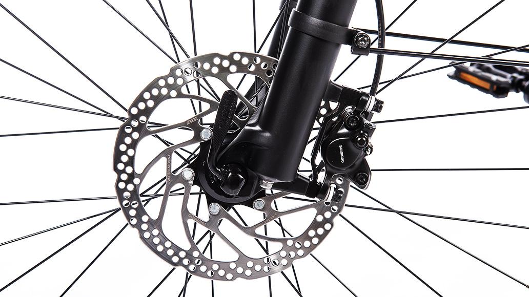 Diamant Zouma+, Test, E-Bike, E-Bike-Test, Kaufberatung